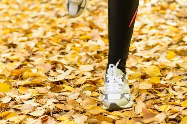 Τρέχοντας το φθινόπωρο